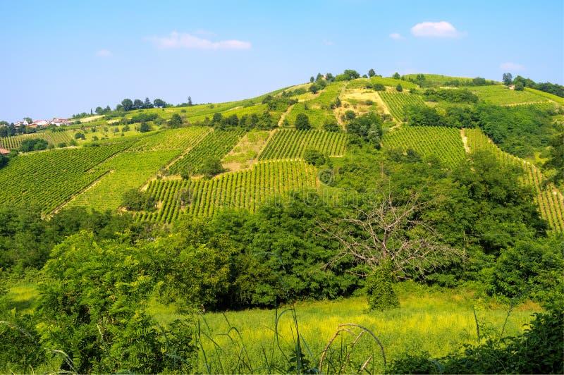 Ландшафт весеннего времени Oltrepo Pavese стоковое изображение