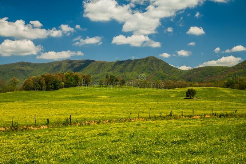 Ландшафт весны, английская горная область стоковые фото