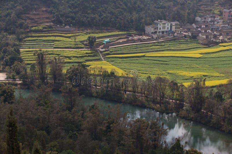Ландшафт весны свежий красочных полей стоковое изображение rf