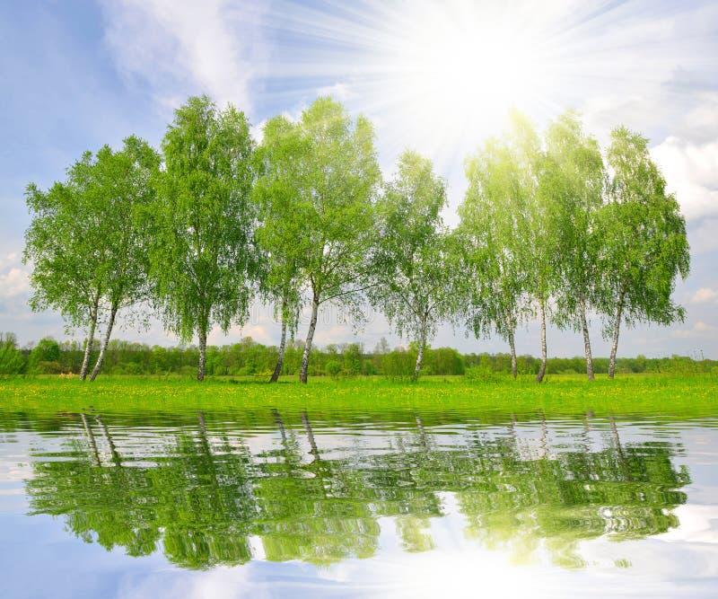 Download Ландшафт весны стоковое фото. изображение насчитывающей зеркало - 33727934