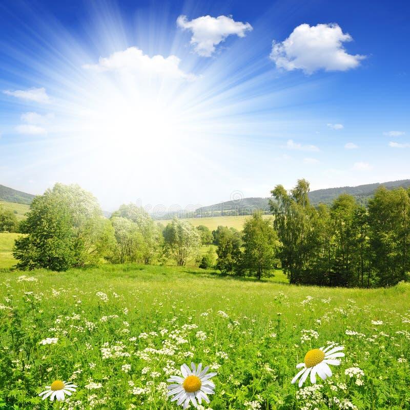 Ландшафт весны стоковые фото
