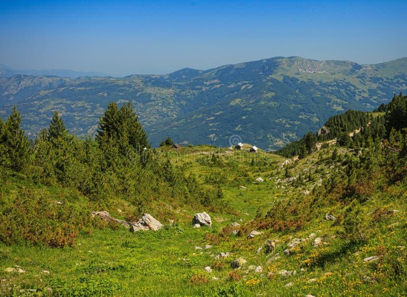 Ландшафт в горах посетителя стоковые изображения rf