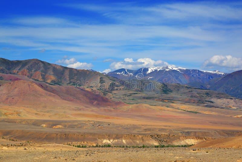 Ландшафт в горах Altai стоковая фотография