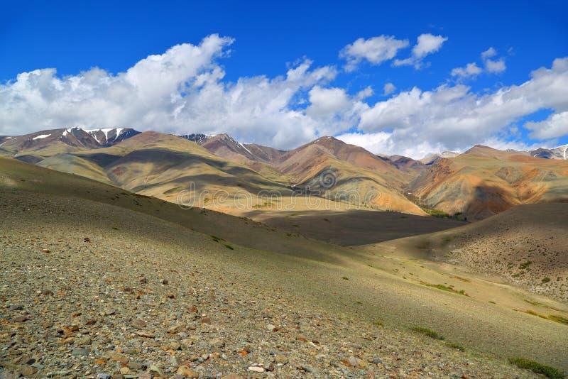 Ландшафт в горах Altai стоковое фото