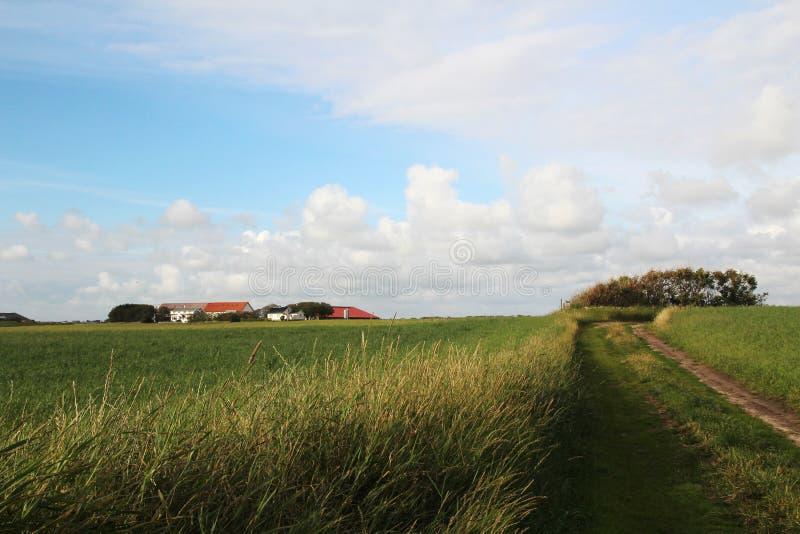 Ландшафт в южной Норвегии стоковые изображения rf