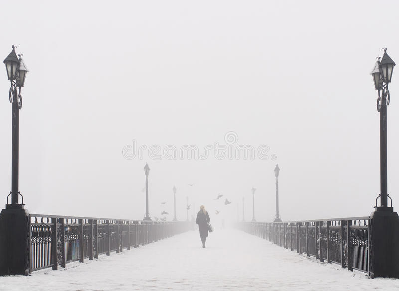 Ландшафт города моста в туманном снежном зимнем дне стоковые изображения rf