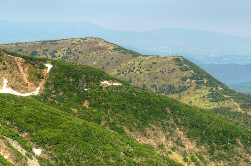 Ландшафт горы весной стоковые изображения