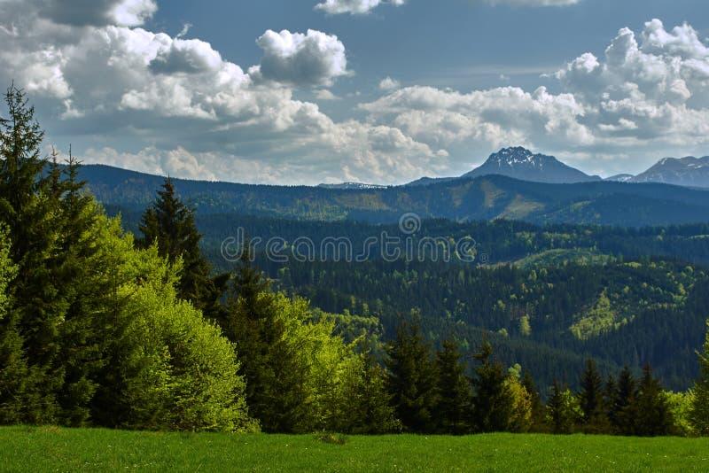 Ландшафт горы в горах Beskid стоковые изображения