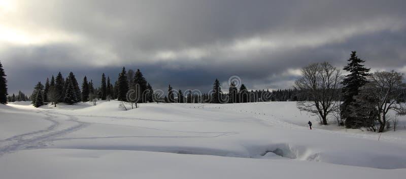 Ландшафт горы в зиме стоковое изображение