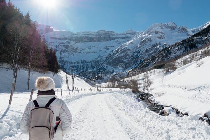 Ландшафт горы в зиме стоковое фото