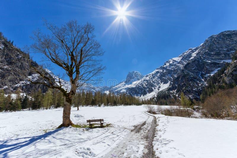 Ландшафт горы в предыдущем весеннем времени с ясными голубым небом и солнечностью Австрией, Тиролем, парком Karwendel высокогорны стоковая фотография rf
