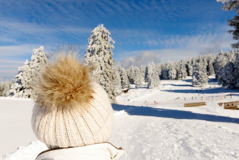 Ландшафт горы зимы с подъемами лыжи стоковые изображения