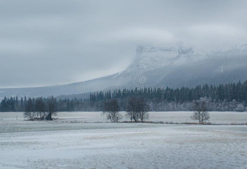 Ландшафт горы зимы стоковая фотография rf
