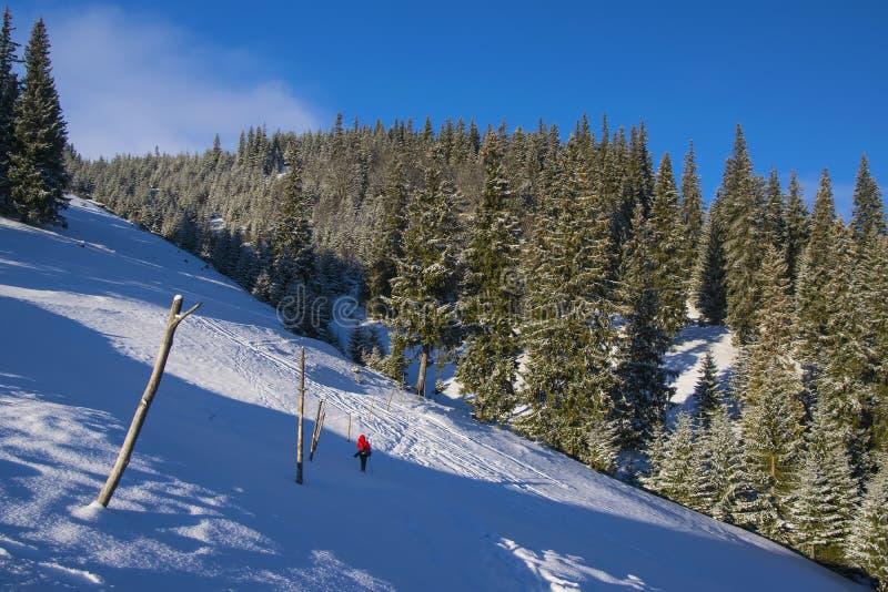 Ландшафт гор зимы с красным цветом одел диаграмму afar стоковые фотографии rf