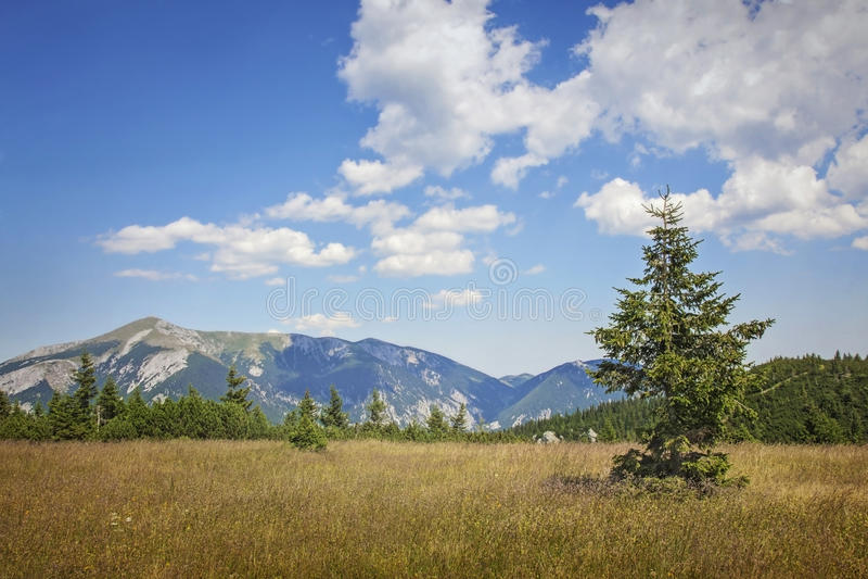 Ландшафт гор стоковое изображение rf