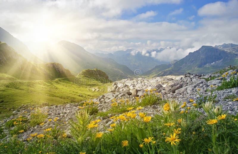 Ландшафт гор стоковое фото rf