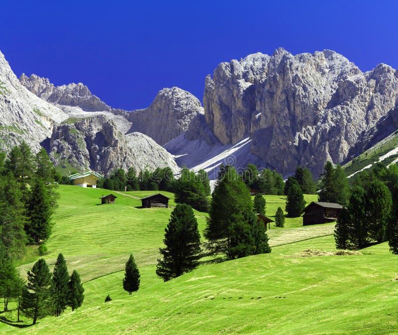 Ландшафт лета в горах доломитов стоковая фотография rf