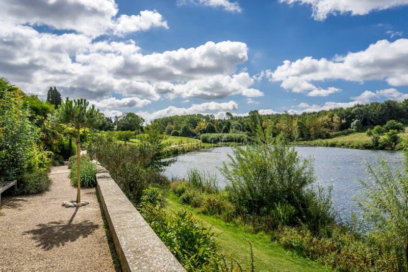 Ландшафт лета озера стоковое фото rf
