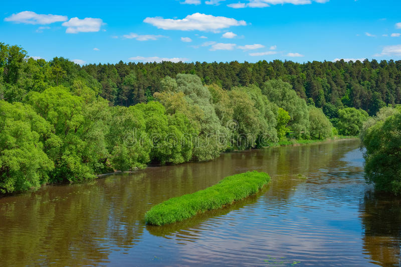 Ландшафт лета с рекой стоковые фотографии rf