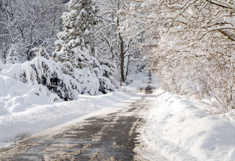 Ландшафт замороженный зимой стоковые изображения rf