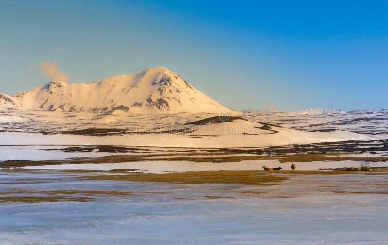 Ландшафт захода солнца снега горы во время зимы стоковые фото