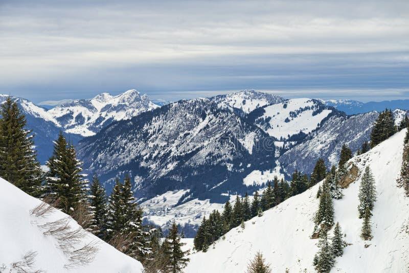 Ландшафт зимы высокогорный обрамленный лесом елей склоняет стоковое изображение