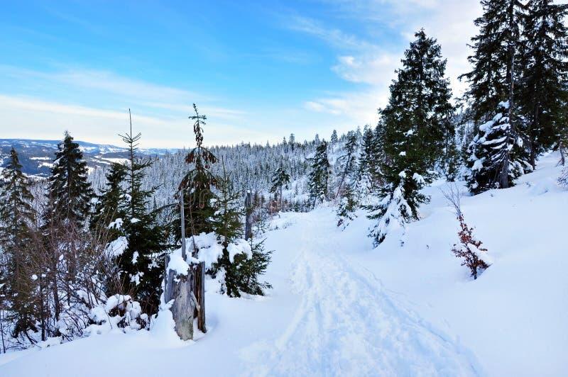Download Ландшафт зимы в горах стоковое фото. изображение насчитывающей вал - 37927128
