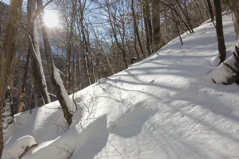 Download Ландшафт зимы в горах стоковое фото. изображение насчитывающей естественно - 81810986