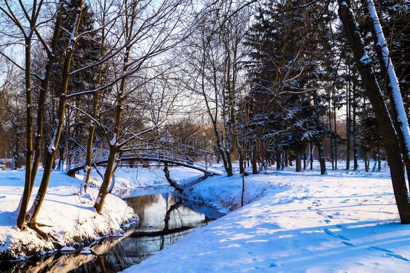 Ландшафт зимы в мосте реки парка стоковые изображения rf