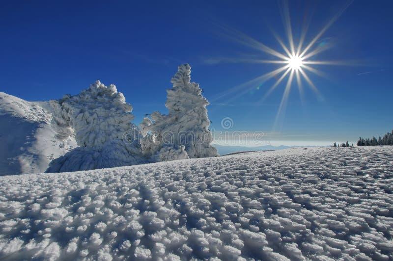 Ландшафт зимы гористый стоковые изображения rf