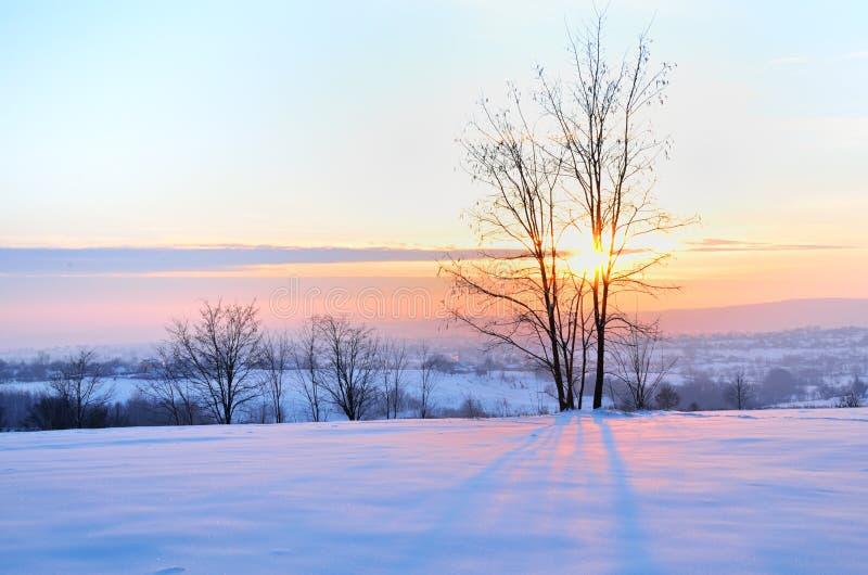 Ландшафт зимы на заходе солнца на холме стоковое изображение rf