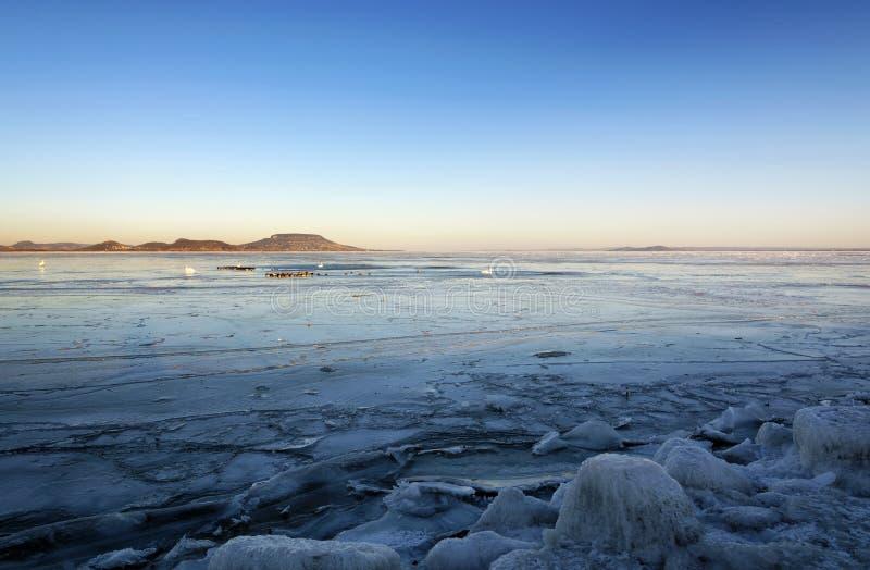 Ландшафт зимы озера Balaton стоковая фотография rf