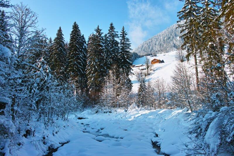 Ландшафт зимы потока горы стоковая фотография rf