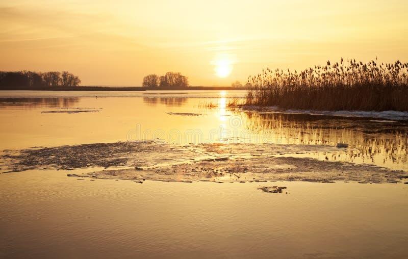 Ландшафт зимы с рекой, тростниками и небом захода солнца стоковые фотографии rf