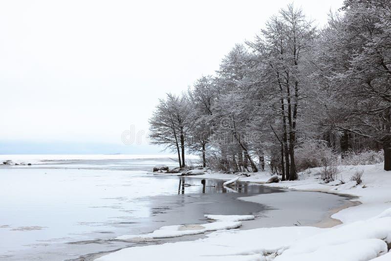 Ландшафт зимы с снежком покрыл валы стоковые изображения rf