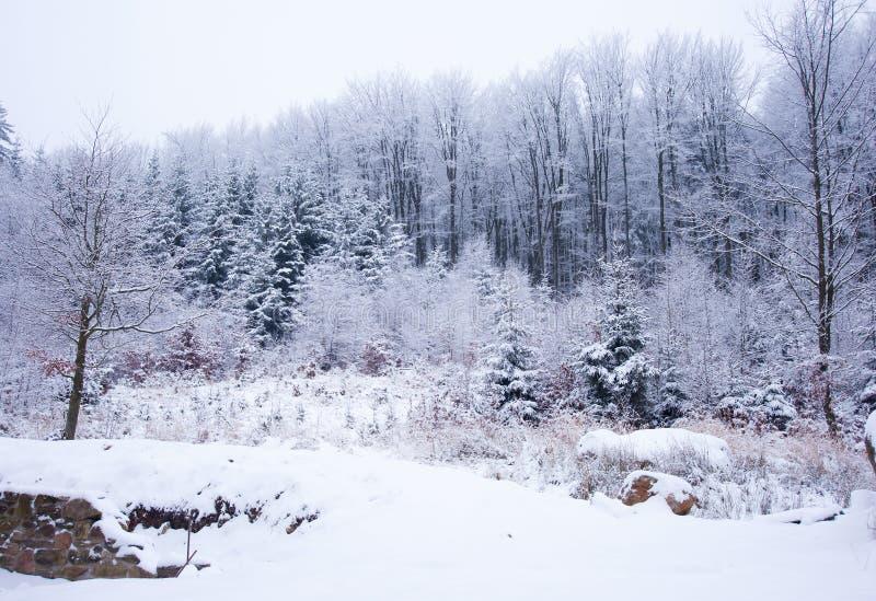 Download Ландшафт зимы стоковое изображение. изображение насчитывающей замерзано - 37926205