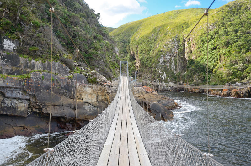 Ландшафт и мост в национальном парке Tsitsikamma стоковое фото rf