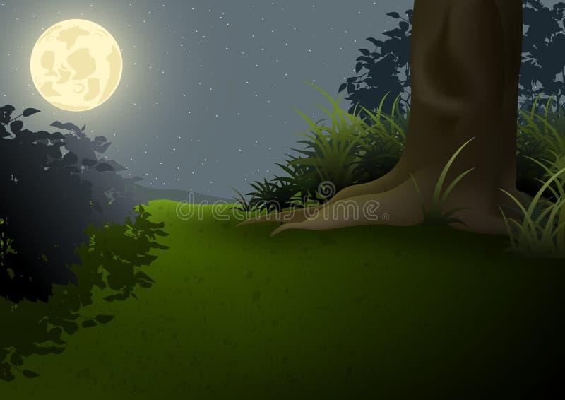 Ландшафт ночи иллюстрация вектора