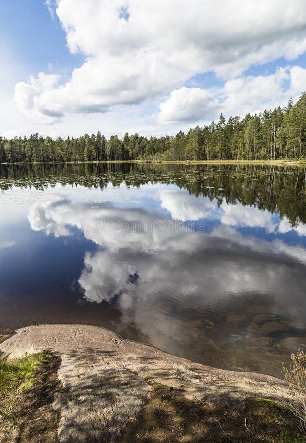 Ландшафт озера Beuautiful в windless летнем дне стоковое изображение