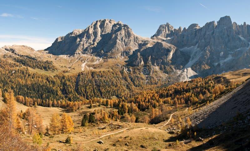 Ландшафт осени в горе стоковые изображения