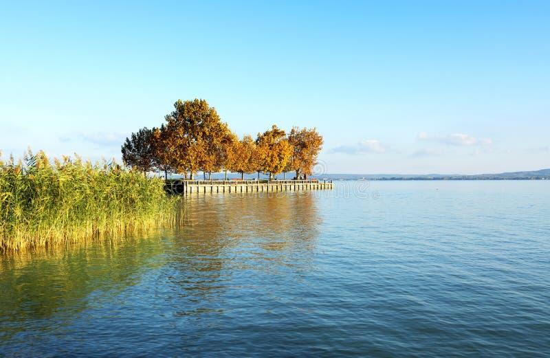 Ландшафт осени на озере Balaton, Венгрии стоковые фотографии rf