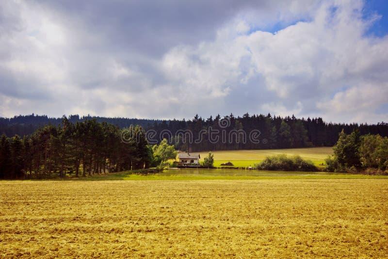 Ландшафт осени Сиротливый дом в древесинах около озера стоковые изображения rf