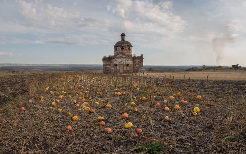 Ландшафт осени с тыквами и старой церковью стоковое фото rf