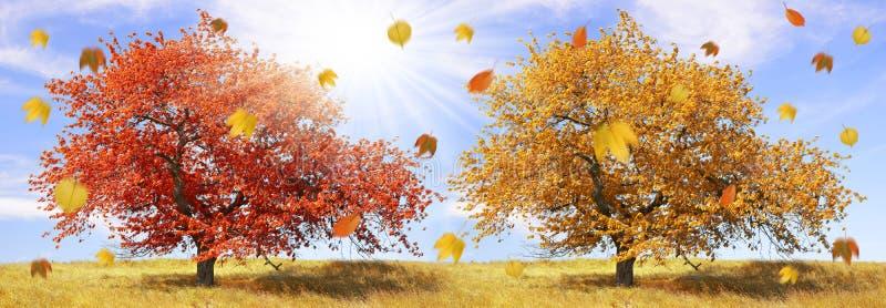 Download Ландшафт осени стоковое изображение. изображение насчитывающей сезон - 33727949