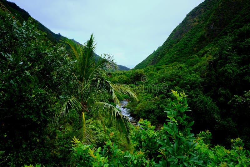 Ландшафт долины Iao, Мауи стоковые изображения