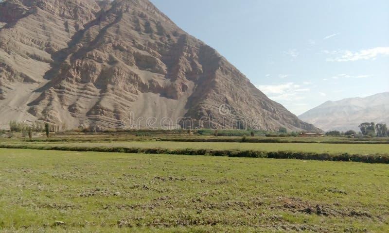 Ландшафт долины Majes в Perú стоковое фото