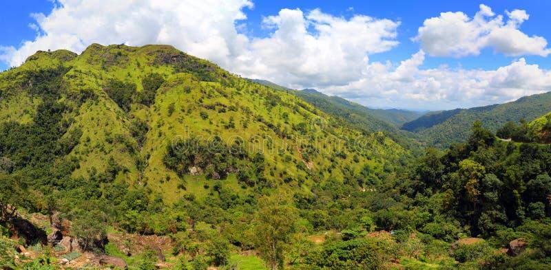 Ландшафт панорамы горы в Шри-Ланке стоковое фото rf