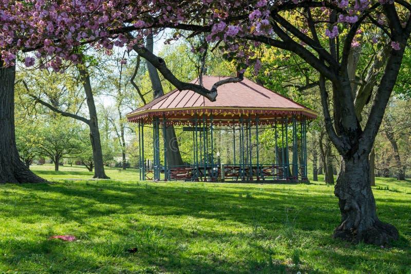 Ландшафт парка друида в Балтиморе, Мэриленде стоковые изображения rf