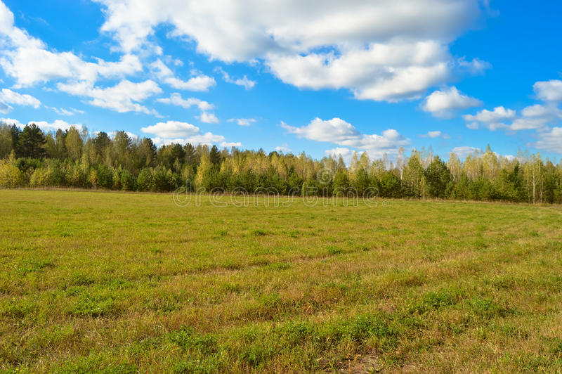 Ландшафт природы, полей, лугов, травы, деревьев, неба стоковая фотография