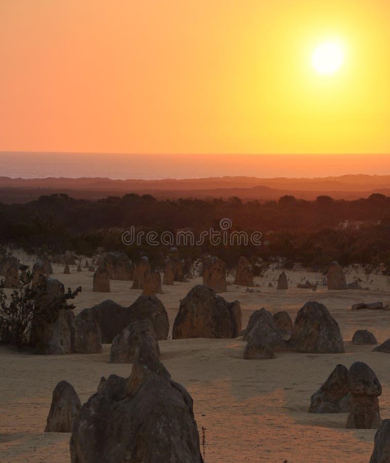 Ландшафт пустыни башенкы и заход солнца Индийского океана, западная Австралия стоковые изображения